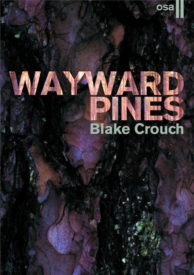 waiward-pines-2