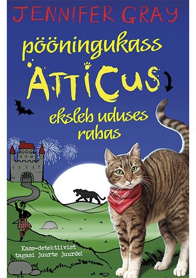 Pööningukass Atticus eksleb uduses rabas #6